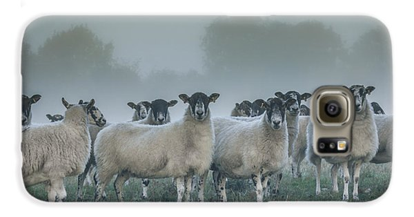 You And Ewes Army? Galaxy S6 Case by Chris Fletcher