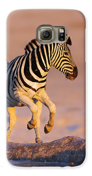 Zebras Jump From Waterhole Galaxy S6 Case