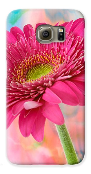 Gerbera Daisy Abstract Galaxy S6 Case