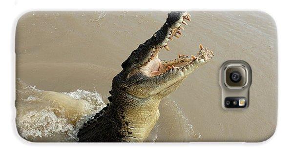 Salt Water Crocodile 2 Galaxy S6 Case by Bob Christopher