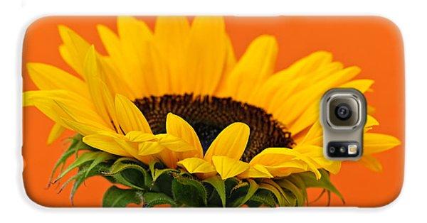 Sunflower Galaxy S6 Case - Sunflower Closeup by Elena Elisseeva