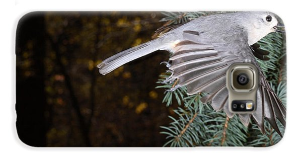 Tufted Titmouse In Flight Galaxy S6 Case by Ted Kinsman