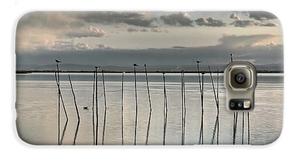 Albufera Gris. Valencia. Spain Galaxy S6 Case