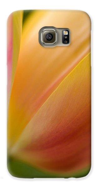Tulip Galaxy S6 Case - April Grace by Mike Reid