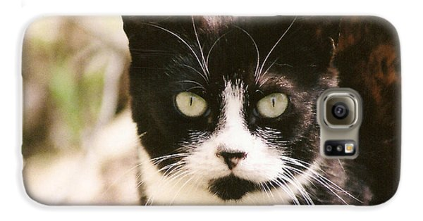Black And White Feral Cat Galaxy S6 Case