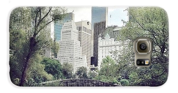 Blue Galaxy S6 Case - Central Park by Randy Lemoine