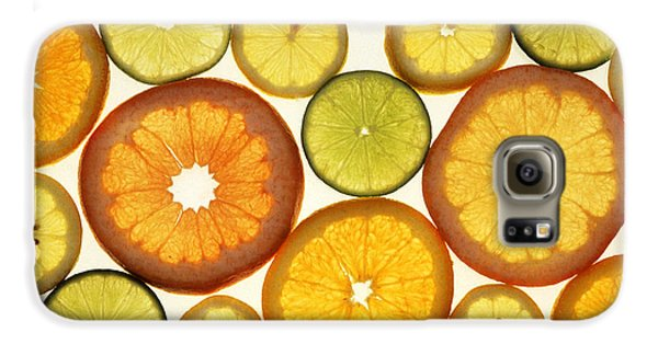 Citrus Slices Galaxy S6 Case by Photo Researchers