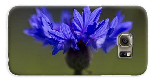 Galaxy S6 Case featuring the photograph Cornflower Blue by Clare Bambers