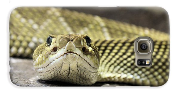 Crotalus Basiliscus Galaxy S6 Case by JC Findley