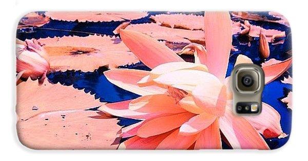 #flower #instahub #instagood #instamood Galaxy S6 Case