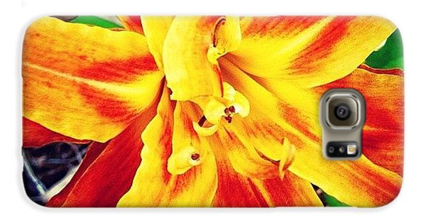 Bright Galaxy S6 Case - Flower by Katie Williams