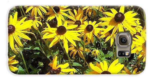 Bright Galaxy S6 Case - Flowers by Lea Ward