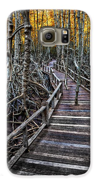 Mangrove Galaxy S6 Case - Footpath In Mangrove Forest by Adrian Evans