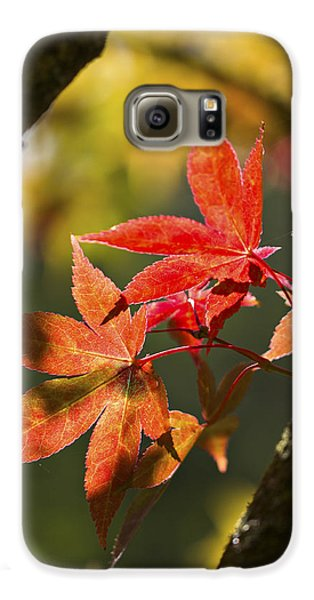 Galaxy S6 Case featuring the photograph In Between... by Clare Bambers