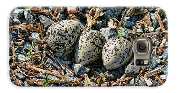 Killdeer Bird Eggs Galaxy S6 Case by Jennie Marie Schell