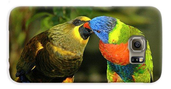 Kissing Birds Galaxy S6 Case by Carolyn Marshall