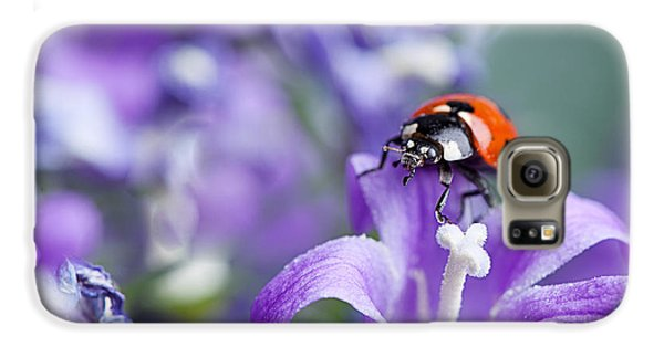 Beetle Galaxy S6 Case - Ladybug And Bellflowers by Nailia Schwarz
