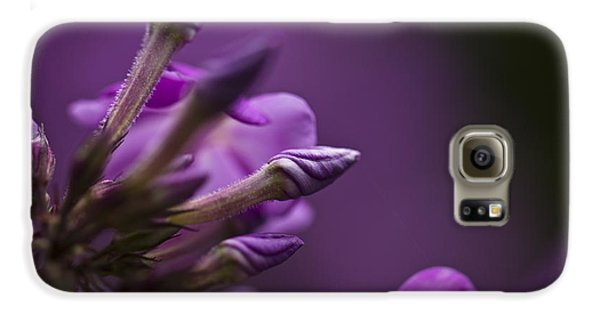 Galaxy S6 Case featuring the photograph Lilac Spirals. by Clare Bambers