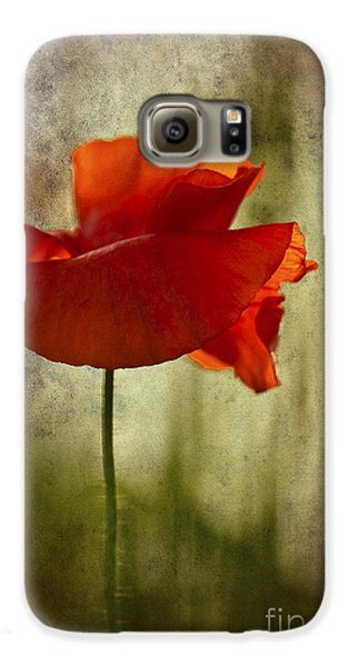 Galaxy S6 Case featuring the photograph Moody Poppy. by Clare Bambers - Bambers Images