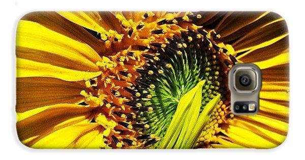 Morning Sun Galaxy S6 Case