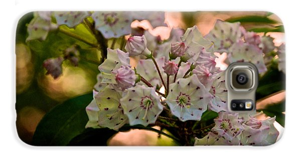 Mountain Laurel Flowers 2 Galaxy S6 Case