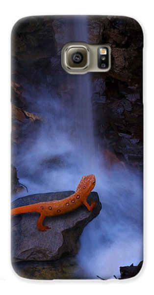 Newt Falls Galaxy S6 Case by Ron Jones