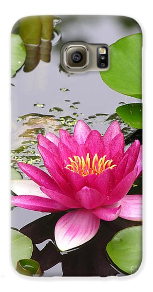 Pink Lily Flower  Galaxy S6 Case by Diane Greco-Lesser