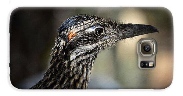 Portrait Of A Roadrunner  Galaxy S6 Case by Saija  Lehtonen