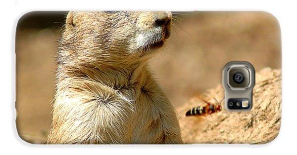 Prarie Dog Bee Alert Galaxy S6 Case by LeeAnn McLaneGoetz McLaneGoetzStudioLLCcom