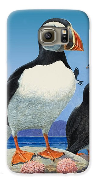 Puffin Galaxy S6 Case - Puffins by R B Davis