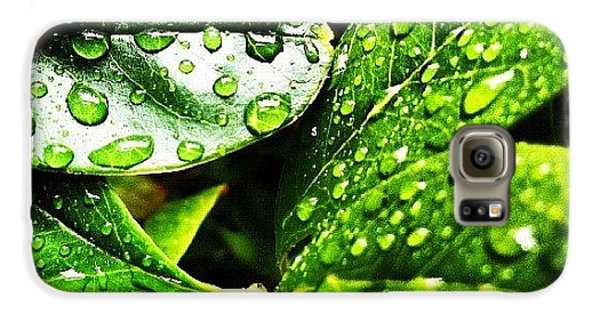 Bright Galaxy S6 Case - Rainy Day by Lea Ward