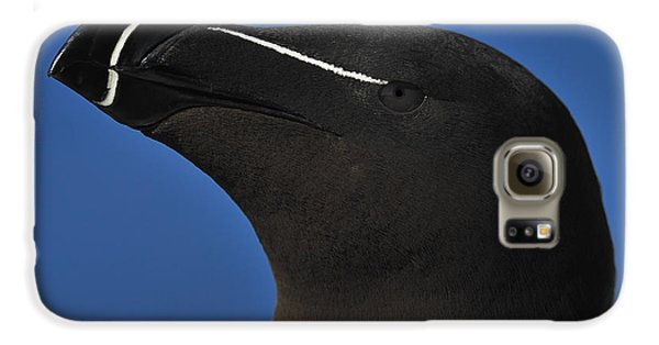 Razorbill Portrait Galaxy S6 Case by Tony Beck