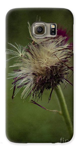 Galaxy S6 Case featuring the photograph Ready To Fly Away... by Clare Bambers