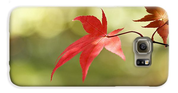 Galaxy S6 Case featuring the photograph Red Leaf. by Clare Bambers