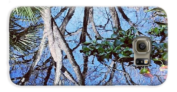 Cool Galaxy S6 Case - #reflection #tree #cool #popularphoto by Mandy Shupp
