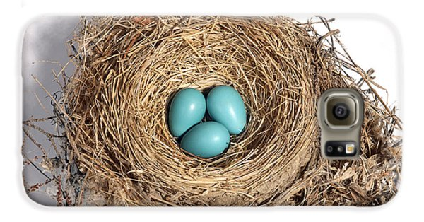 Robins Nest With Eggs Galaxy S6 Case by Ted Kinsman