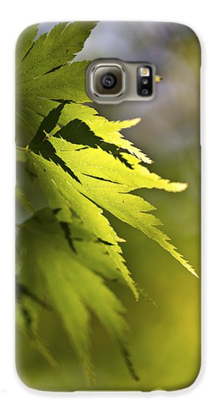 Galaxy S6 Case featuring the photograph Shades Of Green And Gold. by Clare Bambers
