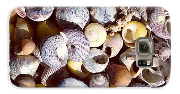 Sunny Galaxy S6 Case - Shells From Brittany by Nic Squirrell