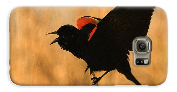 Singing At Sunset Galaxy S6 Case by Betty LaRue