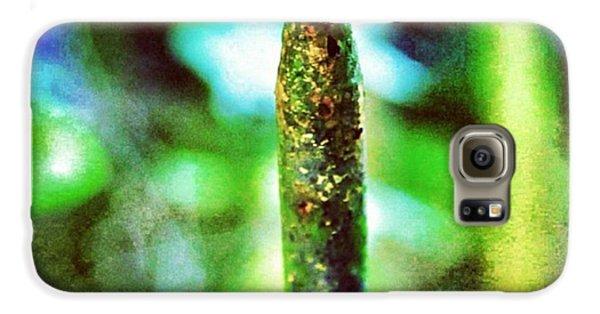 #texture #detail #colour #color #green Galaxy S6 Case