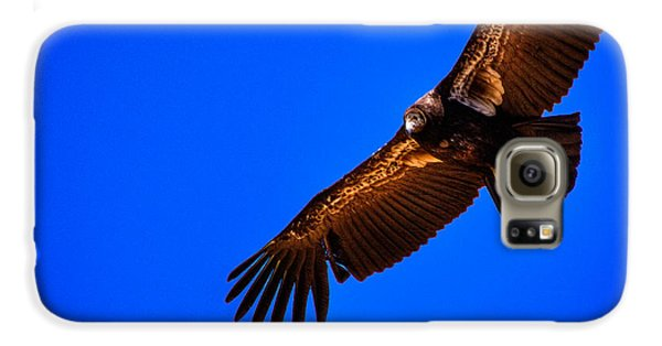The California Condor Galaxy S6 Case