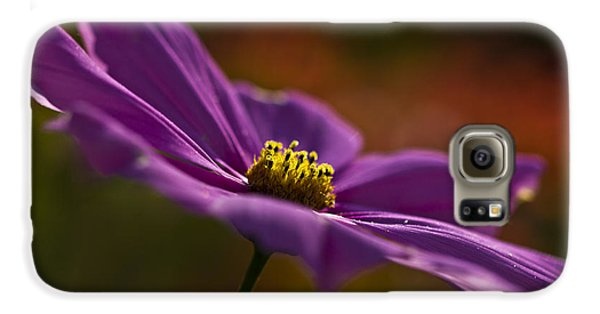 Turn Your Face To The Sun Galaxy S6 Case