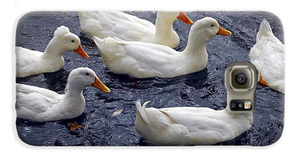White Ducks Galaxy S6 Case by Elena Elisseeva