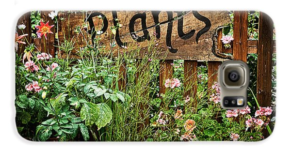 Gardens Galaxy S6 Case - Wooden Plant Sign In Flowers by Simon Bratt Photography LRPS