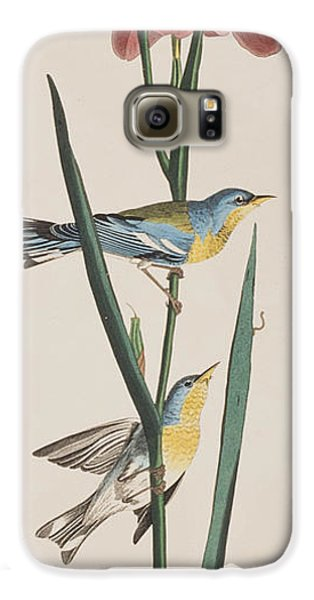Blue Yellow-backed Warbler Galaxy S6 Case by John James Audubon