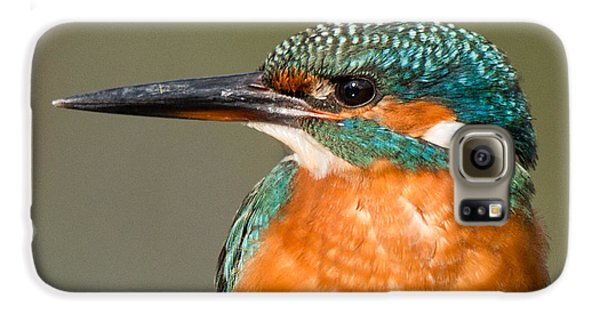 Kingfisher Galaxy S6 Case -   Kingfisher by Ian Hufton