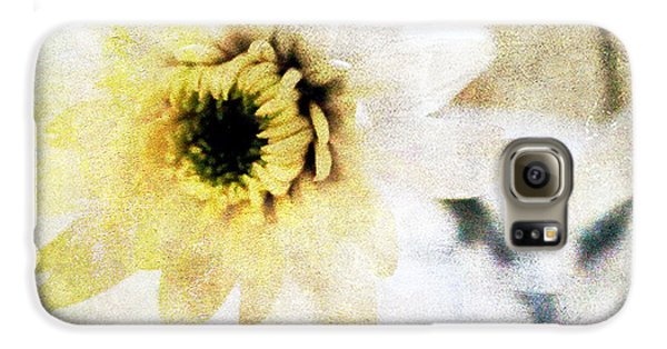 Daisy Galaxy S6 Case -  White Flower by Linda Woods