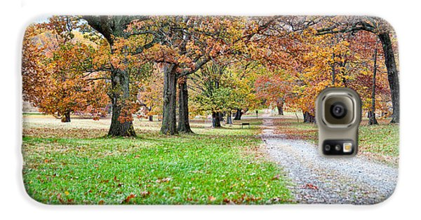 A Walk In The Park Galaxy S6 Case by Robert Culver
