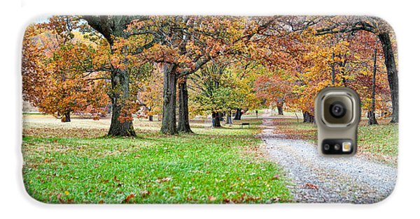 Galaxy S6 Case featuring the photograph A Walk In The Park by Robert Culver