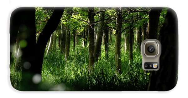 A Walk In The Woods Galaxy S6 Case
